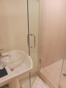 Shower Door Won't Open